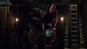 Gorilla Grodd versus The Flash