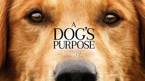 """""""A Dog's Purpose"""" Review"""