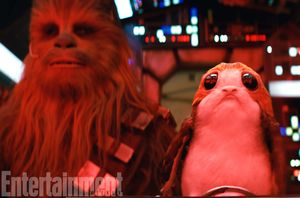 Chewbacca and the porgs  These puffin-like creatures from th