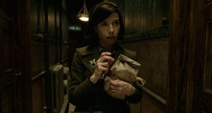 Sally Hawkins, The Shape of Water