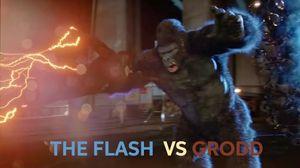"The Flash 2x07 The Flash vs Gorilla Grodd Fight Scene ""Goril…"