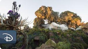 disneyparkslive: Pandora – The World of Avatar Dedication …