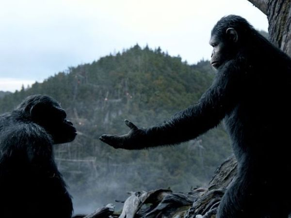 'War for the Planet of the Apes' Director Looks Ahead to Fourth Film and Beyond