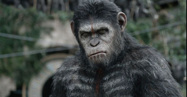 Third Planet of the Apes Movie Gets The Title 'War of the Planet of the Apes'