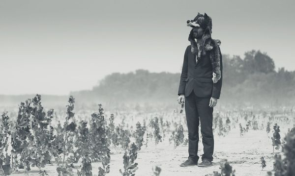 Gruff Rhys embarks on a masterful historical tale in American Interior