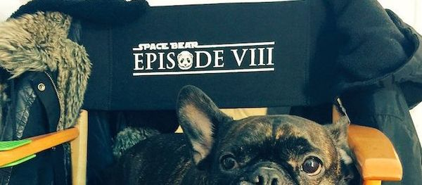 And it's a Wrap on 'Star Wars: Episode VIII'