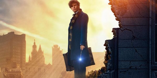 'Fantastic Beasts and Where to Find Them' Gets China Release Date
