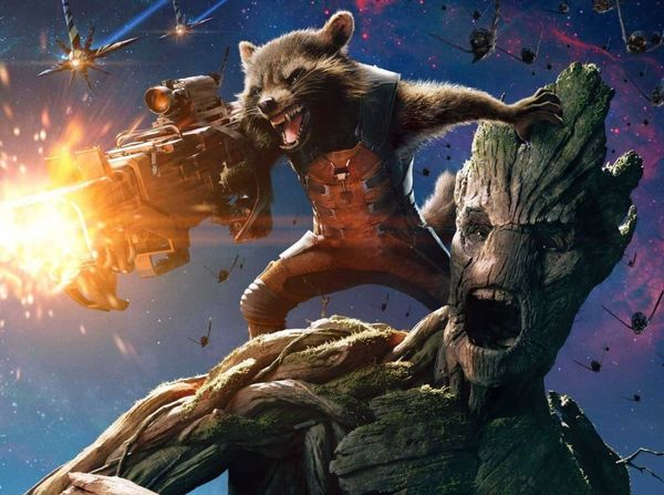 Vin Diesel Teases a Potential Rocket and Groot Team-Up Film After 'Infinity War'