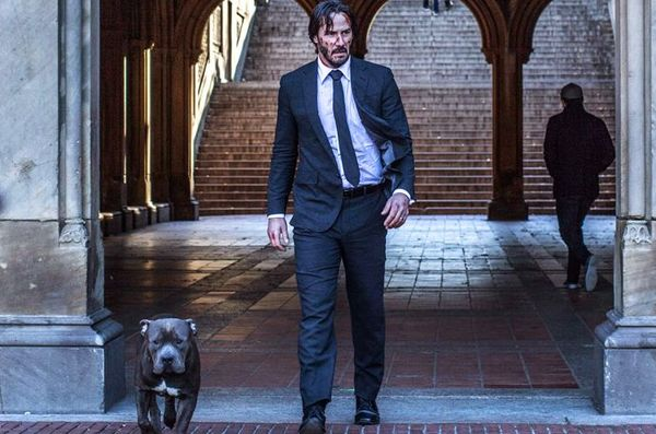 New Details Emerge About 'John Wick 3'