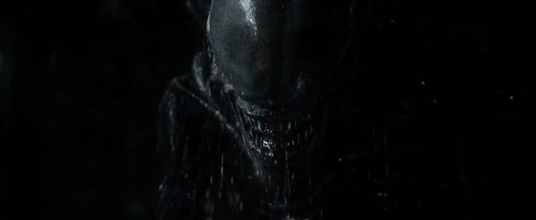 Cultjer roundup: Ridley Scott's 'Alien: Covenant'  - now available on Blu-ray and digital HD