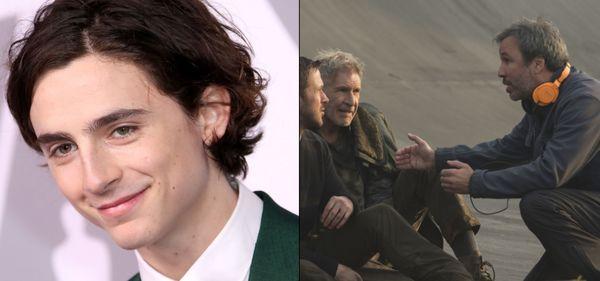 Timothée Chalamet set to star in Denis Villeneuve's 'Dune'