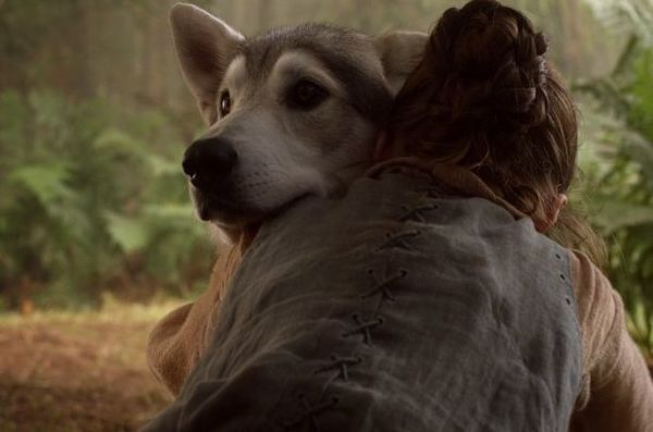 Starks, Direwolves, and White Walkers are confirmed for HBO's 'Game of Thrones' prequel series
