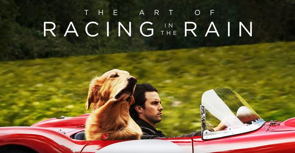 'The Art of Racing in the Rain' Review