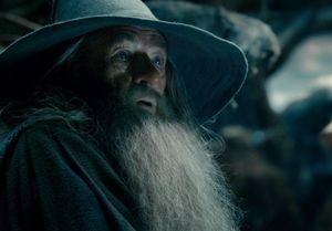 Gandalf baffled in Desolation of Smaug