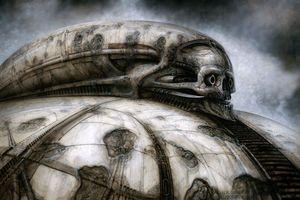 Skull Spacecraft