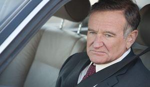 Robin Williams as Henry Altman