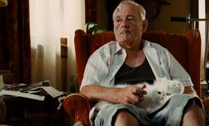 Bill Murray and his white fluffy cat