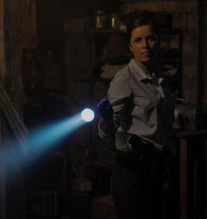 Kim Dickens as detective Rhonda Boney