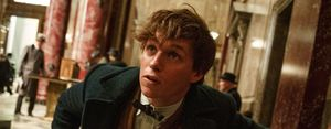 Eddie Redmayne, Fantastic Beasts and Where to Find Them
