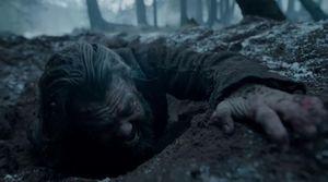 Alejandro González Iñárritu's The Revenant