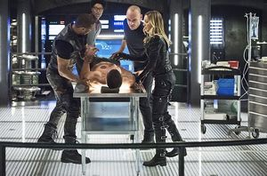 Team Arrow after bee attack