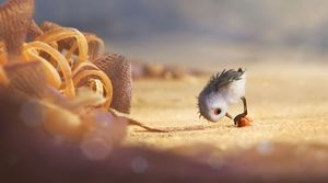 Screenshots from Pixar Short 'Piper'