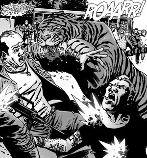 Shiva in action, The Walking Dead