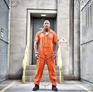 Dwayne Johnson as (former?) federal agent Luke Hobbs