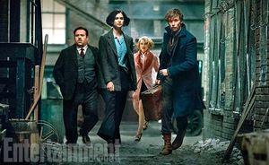 The group of Fantastic Beasts