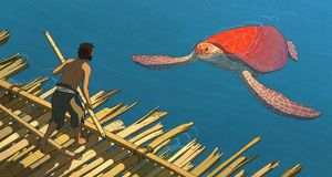 Meeting The Red Turtle