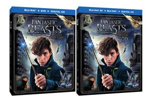 Fantastic Beasts revealed for Blu-Ray