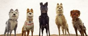 Main pack from 'Isle of Dogs'