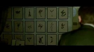 Christopher Plummer shows Daniel Craig the framed flowers in The Girl with the Dragon Tattoo