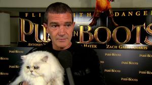 Antonio Banderas at the Puss in Boots cat premiere