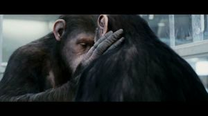 He'll learn who's boss soon enough. Rise of the Planet of the Apes