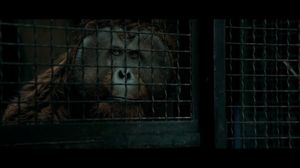 Caesar leads the escape from the prison in Rise of the Planet of the Apes