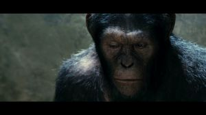 They're not people you know. Rise of the Planet of the Apes