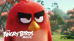 Angry Birds work on their Anger in Angry 'The Angry Birds' T