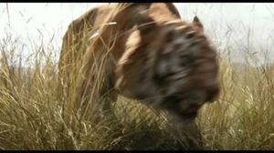 First trailer for Disney's 'The Jungle Book'