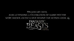 Fantastic Beasts And Where To Find Them Highlight Reel From