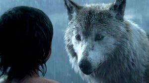 The Jungle Book Clip - Mowgli Leaves The Pack