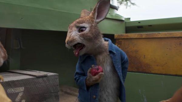 'Peter Rabbit 2' Delay Could've Been Prevented